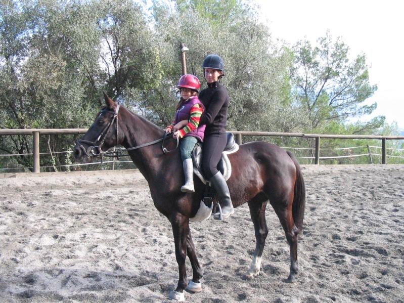 centre equestre nice